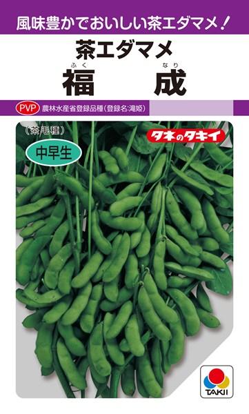 枝豆 種 『福成』 40ml