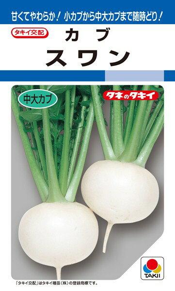 中、大カブ 種 『スワン』 7.5ml(DF) タキイ種苗