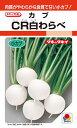小カブ 種 『CR白わらべ』 20ml タキイ種苗