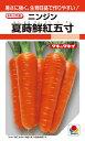 ニンジン 種 『夏蒔鮮紅五寸』 20ml タキイ種苗