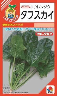 ホウレンソウ 種 『タフスカイ』 45ml(RF) タキイ種苗