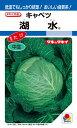 春系及び春キャベツ 種 『湖水』 1ml(RF) タキイ種苗