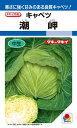 春系及び春キャベツ 種 『潮岬』 1.3ml(DF) タキイ種苗