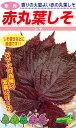 松永種苗 シソ 紫蘇 赤丸葉しそ 1dl