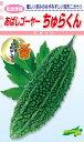 種苗・園芸ショップ 種もりで買える「松永種苗 ニガウリ あばしゴーヤ? ちゅらくん 小袋」の画像です。価格は270円になります。