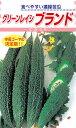 種苗・園芸ショップ 種もりで買える「松永種苗 ニガウリ グリーンレイシ ブランド 小袋」の画像です。価格は270円になります。