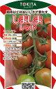 トキタ種苗 ミニトマト しましまレッド 100粒