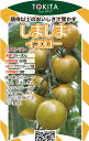 トキタ種苗 ミニトマト しましまイエロー100粒