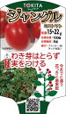 トキタ種苗 ミニトマト ジャングルトマト100粒