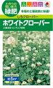 タキイ種苗 緑肥 種 ホワイトクローバー(しろクローバー)