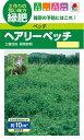 タキイ種苗 緑肥 種 ヘアリーベッチ