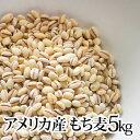 【アメリカ産 もち麦 1kg×5袋】5kg 種商 TV 話題 健康 ヘルシー テレビ もちもち 食物繊維 美容 人気 もちむぎ 10kg 1キロ 5キロ