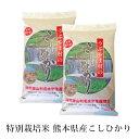 【熊本県産 産山こしひかり(特別栽培米)5kg×2袋 】美味しい おいしい 人気 阿蘇 阿蘇山 こしひかり うぶやま村 甘い 米 送料無料 令和2年産 九州 2020年産 米 お米 コメ