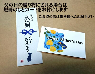 父の日のし/カード/父の日感謝いつもありがとう