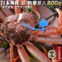日本海産【活】ブランド松葉ガニ<特選大サイズ>約800g1杯...