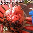 日本海産【茹】ブランド松葉ガニ<特大サイズ特選>1000g1...