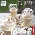 【水辺のホテル小さな白い花】【白い花プリン】京都ご当地プリン・LITTELEWHITEFLOWER・ぷりん・ミルクプリン・ヒラヤミルク使用