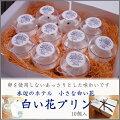 【水辺のホテル小さな白い花】【白い花プリン】京都ご当地プリン・LITTELEWHITEFLOWER・ぷりん・ミルクプリン