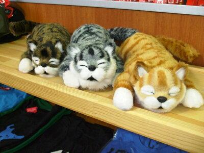 ★笑う猫★アニマルギミックシリーズ 笑うトラに続き入荷決定!!☆タングラムオンラインショ...