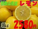紀州和歌山♪ 国産レモン 3kg 2,580円 【送料無料】...