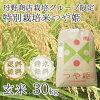 つや姫玄米30kg商品画像
