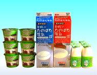 牛乳・ヨーグルトセット(TK-3)
