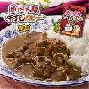 めっちゃ大阪 牛すじカレー(辛口)⇒【RCP】レトルト