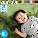 ★20時〜4H全品P10倍★【送料無料】 ラグ 200×30...