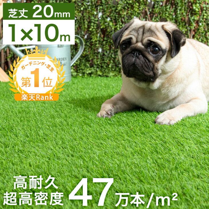 【送料無料/在庫有】 人工芝 ロール 1m×10m 芝丈20mm 高耐久 リアル 春秋色 U字ピン24本付 u字ピン 24本 水はけ リアル 10m ピン セット ガーデニング ベランダ DIY ガーデン 屋上 芝生 20mm 人工 芝 緑色 マット
