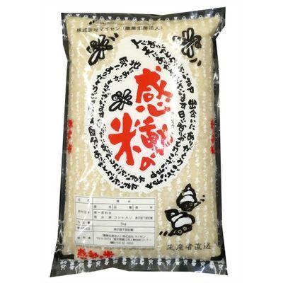 マイセン 感動の米コシヒカリ 白米 5kg E104206H