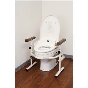 その他 パナソニックエイジフリーライフテック トイレ用手すり 洋式トイレ用スライド手すり(ステンレス) PN-L53001 ds-1550742:家電のタンタンショップ プラス