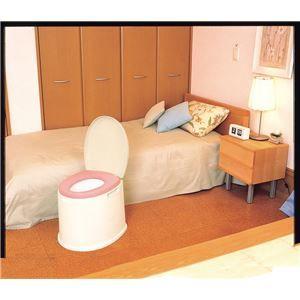 その他 パナソニックエイジフリーライフテック 樹脂製ポータブルトイレ ポータブルトイレポケット付DX VALPTHBEDX ds-1550118