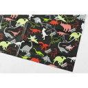 アサヒ興洋 レジャーシート 恐竜柄 S 60×90cm (レジャーシート)【2個セット】 4901367042701