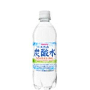 その他 【まとめ買い】サンガリア 伊賀の天然水炭酸水 PET 500ml ×48本(24本×2ケース) ds-2166171