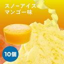 【iceworld】フラワースノーアイス用 スノーアイス マンゴー味 150g 10個