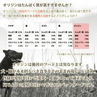 ★先行販売!★【NEW】ORIJENオリジンパピーラージ中大型~超大型犬・子犬用妊娠・授乳中の母犬にもバイオロジックフードドライ11.3kg【賞味期限2018年5月】【送料無料(一部地域除く)】