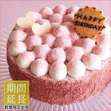 季節限定 誕生日ケーキ バースデーケーキ 苺とピスタチオのケーキ 14cmケーキ スイーツ 苺 ストロベリー プレゼント 大人 子供 かわいい お取り寄せ 通販 ギフト インスタ映え