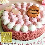 季節限定 誕生日ケーキ バースデーケーキ 苺とピスタチオのケーキ 16cmケーキ スイーツ 苺 ストロベリー プレゼント 大人 子供 かわいい お取り寄せ 通販 ギフト インスタ映え
