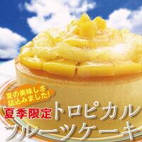 夏期限定トロピカルフルーツケーキ