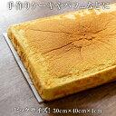 【送料無料】【冷凍】スポンジケーキシート プレーン 2枚&明...