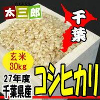 千葉県産 コシヒカリ 玄米30kg