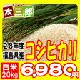 平成28年度 福島県産 コシヒカリ 米 20kg【送料無料】【HLS_DU】P25Apr15