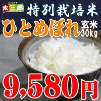 平成28年度福島県産 ひとめぼれ玄米30kg(精米後白米27kg)【...