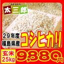 【新米】平成29年度 福島県産 コシヒカリ 玄米25kg又は白米22.5kg 【送料無料】
