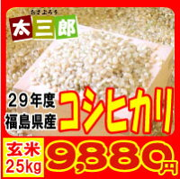 平成28年度福島県産コシヒカリ玄米30kg又は白米27kg【米30kg送料無料】【送料無料】532P16Jul16