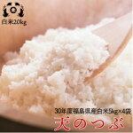 新米平成30年度福島県産天のつぶ白米20kg(5kg×4袋)送料無料米【HLS_DU】P25Apr15