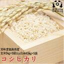 【大特価】平成30年度 福島県産 コシヒカリ 玄米25kg又は白米22.5kg 【送料無料】