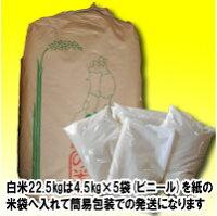 【新米】平成29年度福島県産ひとめぼれ玄米25kg又は白米22.5kg【送料無料】