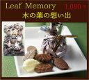Leaf Memory 木の葉の想い出250g【バレンタインに】