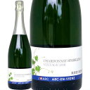日本ワイン スパークリングワイン 2016年 アルカンヴィーニュシャルドネスパークリング 長野県 アルカンヴィーニュ 750ml